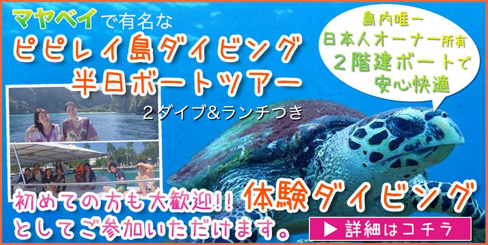 ピピ島 ダイビング 日本人インストラクタープーケット